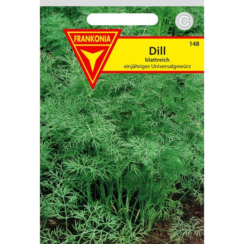 Frankonia Dill 500 Pflanzen Tetra für ca